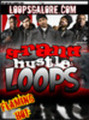 Grand Hustle Loops HOT